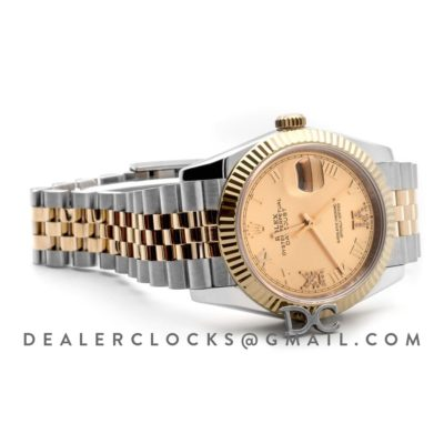 Datejust 36 126283RBR Champagne Dial in Yellow Gold and Steel with Diamond Roman Numerals Markers